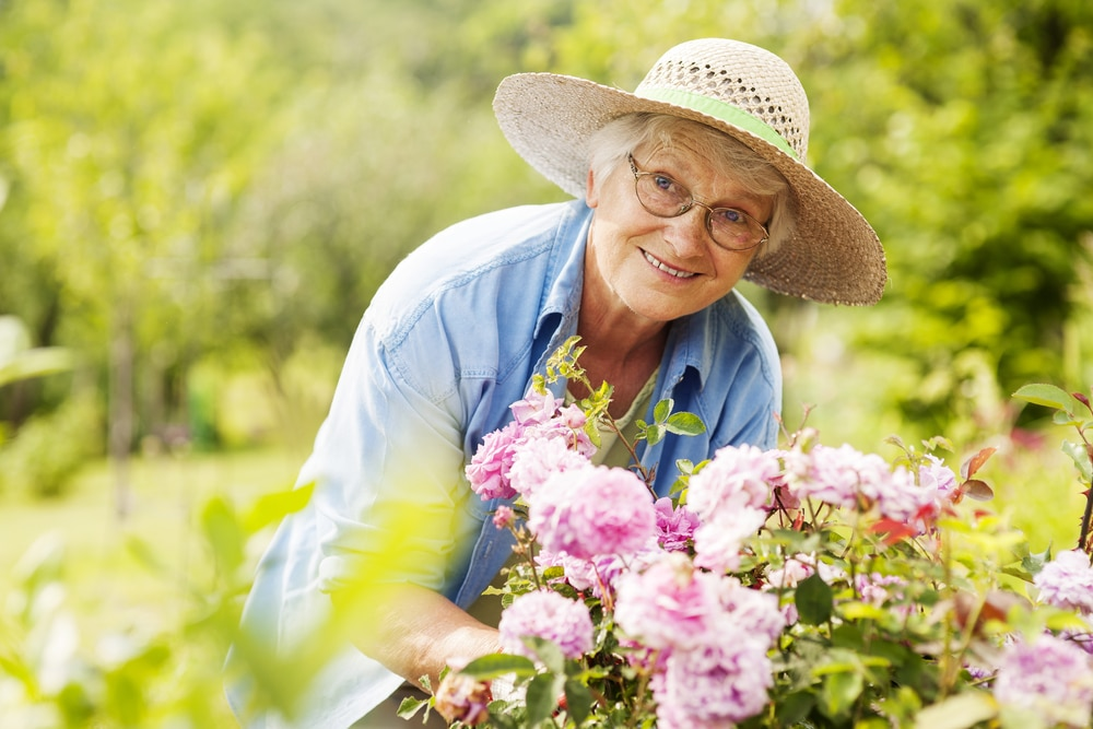 Which Summer Activities Are Both Fun And Safe For Seniors?