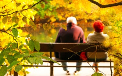 Which Fall Activities Are Both Fun And Safe For Seniors?